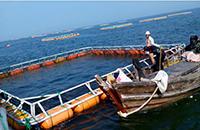 海产养殖基地无线视频监控解决方案